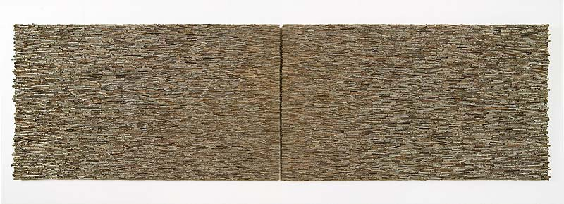 Streamline_No._1_2005_Shona_Wilson_300x90x7cm_twigs_on_board_.jpg